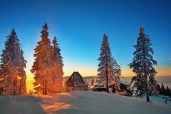 De winter in Pestera-Dorp, het nationale park van Piatra Craiului, Brasov, Roemenië Stock Foto's