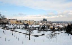 De winter Praag Stock Foto