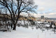 De winter Praag Stock Foto's
