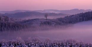 De winter roze landschap Royalty-vrije Stock Afbeeldingen