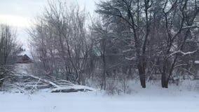 De winter Russisch landschap van het treinvenster, bus, auto stock videobeelden