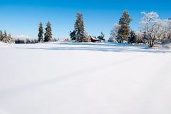 De winter scape stock afbeeldingen