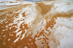 De winter, Silver Lake-Zandduinen Royalty-vrije Stock Afbeeldingen