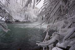 De winter, sneeuw, rivier, bomen royalty-vrije stock foto