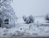 De winter sneeuwgebieden Stock Afbeelding