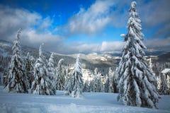 De winter sneeuwlandschap in bergen van nette bosaard Stock Foto's