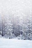 De winter sneeuwval Stock Afbeelding