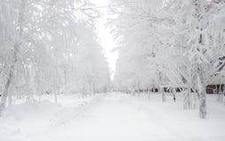 De winter snow-covered steeg in de noordelijke stad in de koude van -40 C royalty-vrije stock foto
