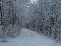 De winter snow-covered weg Stock Foto's