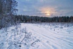 De winter sombere zonsondergang dichtbij het bos royalty-vrije stock afbeelding
