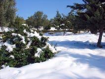 De winter in stad Stock Foto's