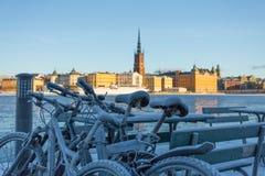 De winter in Stockholm, Zweden, Europa stock afbeelding
