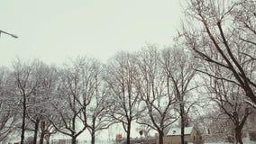 De winter in Tempelhof Berlijn royalty-vrije stock afbeeldingen