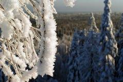De winter in de Ural-bergen Royalty-vrije Stock Afbeelding