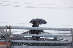 2017 de winter van de de Wintersneeuw streetsczpe Royalty-vrije Stock Foto