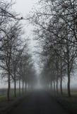 De Winter van de Napavallei Royalty-vrije Stock Afbeeldingen