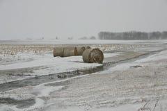 De Winter van Iowa Stock Afbeeldingen