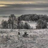De winter van lage kleur, bewolkte middag royalty-vrije stock afbeeldingen