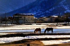 De winter van shangri-La Stock Afbeeldingen