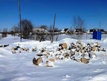 De winter van Siberië Stock Fotografie