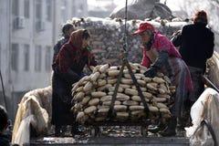 In de winter verdienen de arbeiders hun hard geld in de vijver Royalty-vrije Stock Fotografie