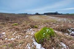 De winter of vroeg de lentelandschap van keistenen op gebieden Stock Afbeelding