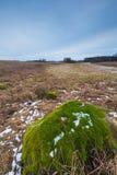 De winter of vroeg de lentelandschap van keistenen op gebieden Stock Foto