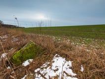 De winter of vroeg de lentelandschap van keistenen op gebieden Royalty-vrije Stock Foto