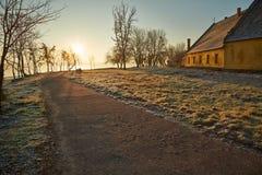 De winter walkwy met vorst Stock Foto