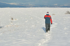 De winter wandeling Stock Foto