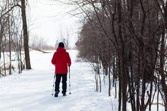 De winter wandeling Stock Fotografie