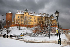 De winter Wawel Stock Foto