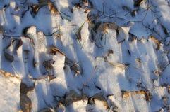 De winter, winter-getijde, wintertijd Royalty-vrije Stock Afbeeldingen