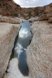De winter in woestijn Negev. Stock Afbeeldingen