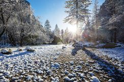 De winter in Yosemite stock afbeeldingen