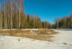 De winter zonnig landschap Royalty-vrije Stock Foto