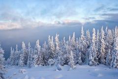 De winter in zuidelijke ural. De berg van Kumardaque Stock Foto's