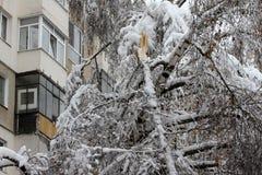 De winter De zware sneeuwval in de stad breekt de bomen en maakt andere schade royalty-vrije stock fotografie
