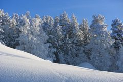 De winter in Zweeds Lapland Royalty-vrije Stock Afbeelding