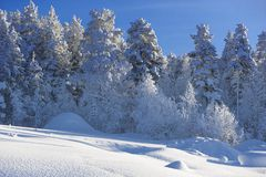 De winter in Zweeds Lapland Royalty-vrije Stock Foto