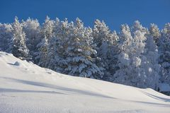 De winter in Zweeds Lapland Stock Foto's