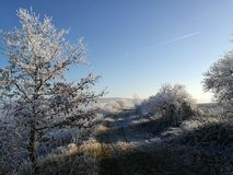 De winteraard in Tsjechische Republiek Royalty-vrije Stock Afbeeldingen