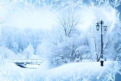 De winterachtergrond, landschap De winterbomen in sprookjesland De winter Stock Afbeelding