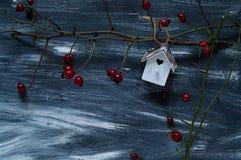 De de winterachtergrond met een klein vogelhuis en een wildernis nam op een blauwe en witte achtergrond, natuurlijke lichte, hoog Stock Afbeeldingen