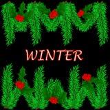 De winterachtergrond met groene takken van sparren, Hulstbessen o Stock Foto's