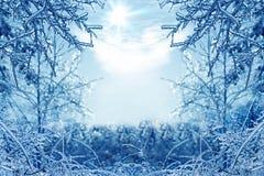 De winterachtergrond met ijzige takken in de voorgrond Royalty-vrije Stock Foto