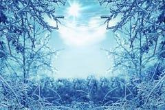 De winterachtergrond met ijzige takken in de voorgrond Royalty-vrije Stock Foto's
