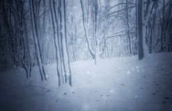 De winterachtergrond met sneeuwbos royalty-vrije stock afbeeldingen