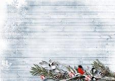 De winterachtergrond met takken, bessen en goudvink, met cop Stock Foto's