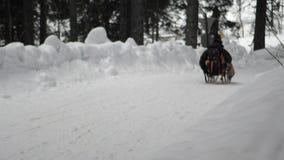 De winteractiviteiten met mensen in het bos stock footage